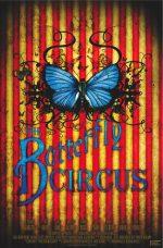 Цирк бабочек